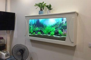 Bể cá treo tường Hải Phòng