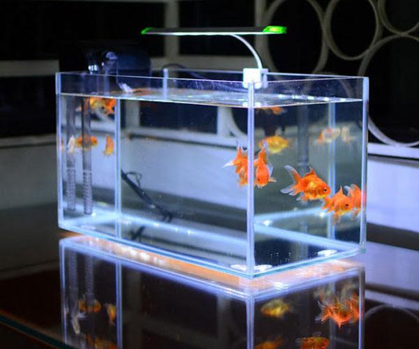 Xưởng cắt kính bể cá tại Hải Phòng